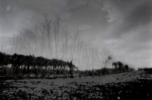 IMGP3249-Edit-Edit